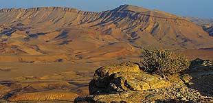 Мицпе-Рамон, Израиль