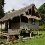 Папуа Новая Гвинея фото