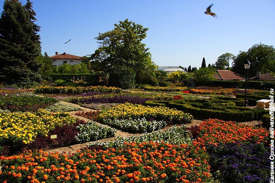 Балчик Резиденция Дворец Тихое гнездо фото