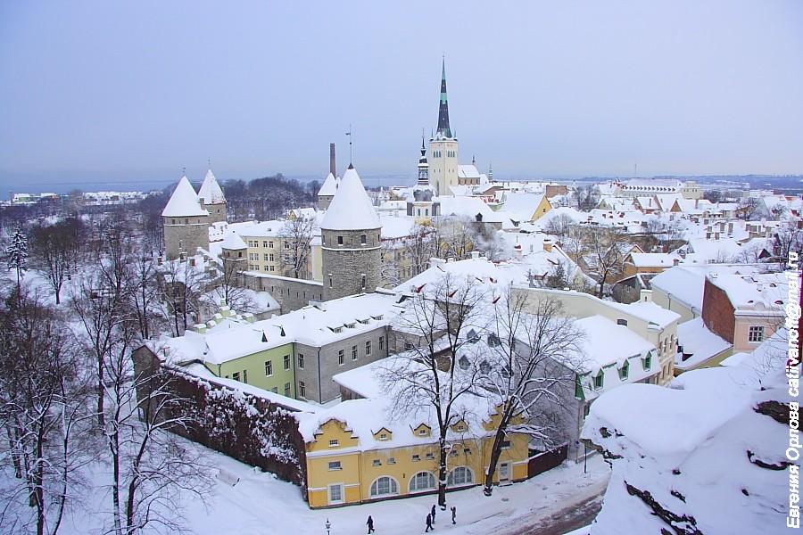 Старый город Таллинн фото
