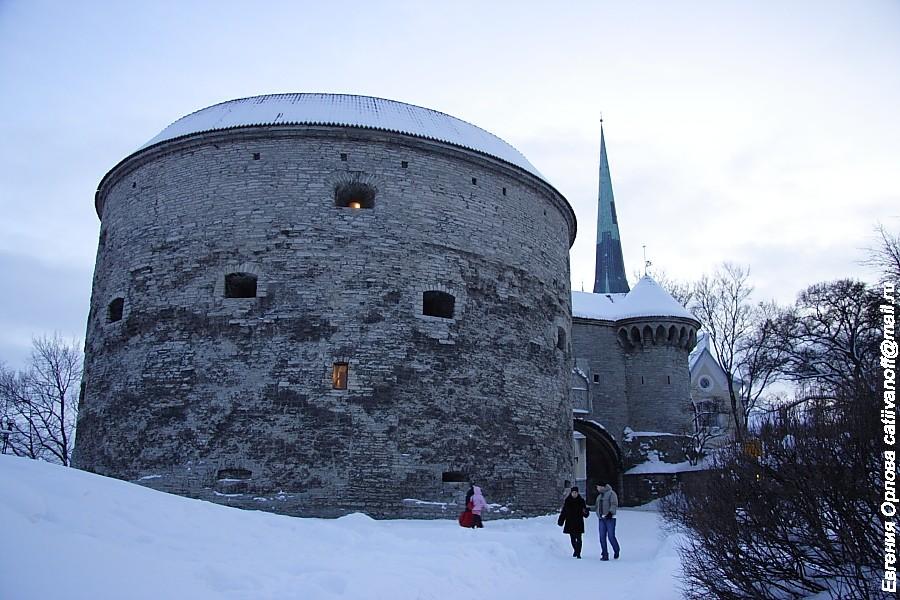 Башня Kiek in de Kok (Кик-Ин-Де-Кёк) фото