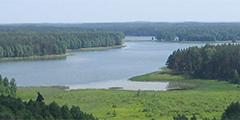 Новые смотровые башни позволят увидеть красоту литовской природы
